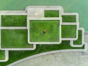 Evergreen https://wunderstock.com/photo/urban-green-roof-drone-portrait_y9Yexw4QHW0C